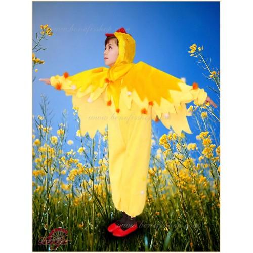 Chicken - R 0217