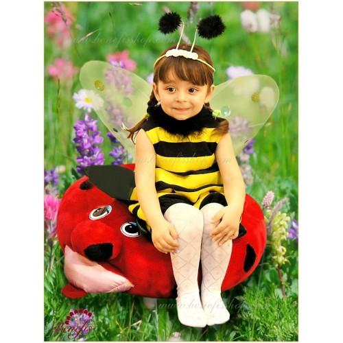 Bee - R 0218